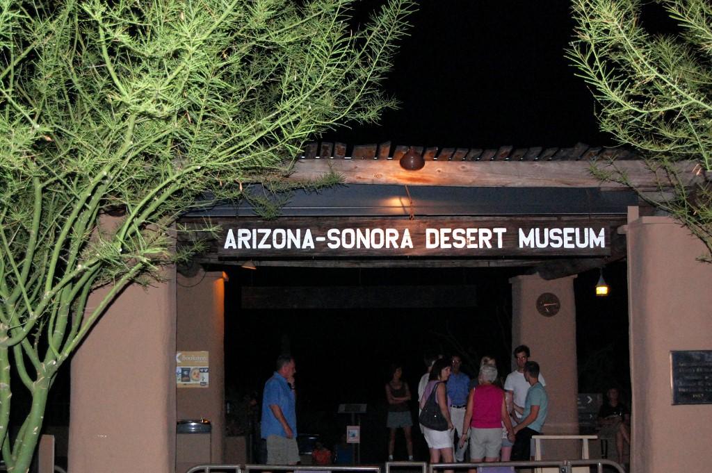 Arizona-sonora Desert Museum clipart #4, Download drawings