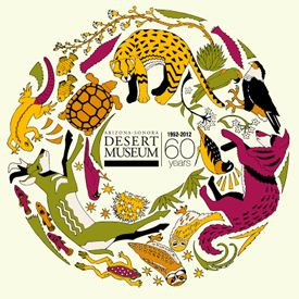 Arizona-sonora Desert Museum clipart #13, Download drawings