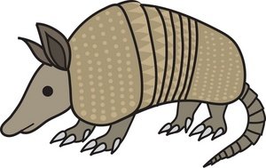 Armadillo clipart #20, Download drawings