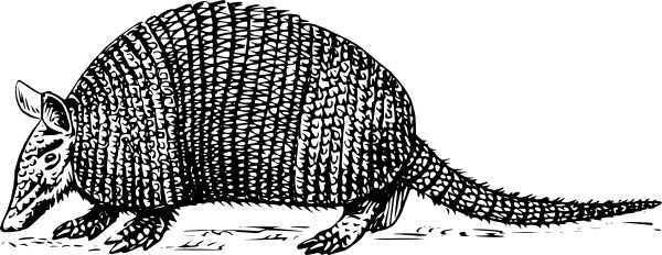 Armadillo clipart #12, Download drawings