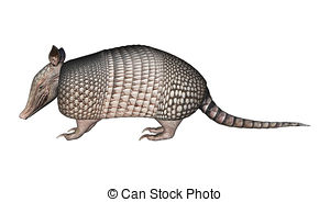 Armadillo clipart #13, Download drawings