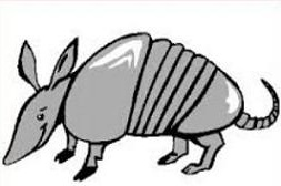 Armadillo clipart #1, Download drawings