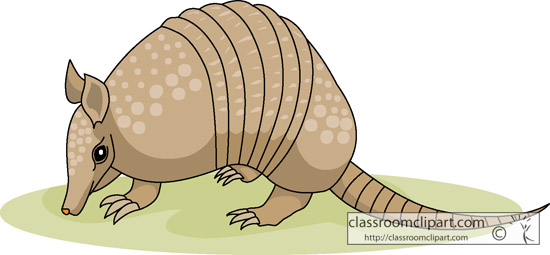 Armadillo clipart #19, Download drawings