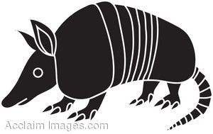 Armadillo clipart #10, Download drawings