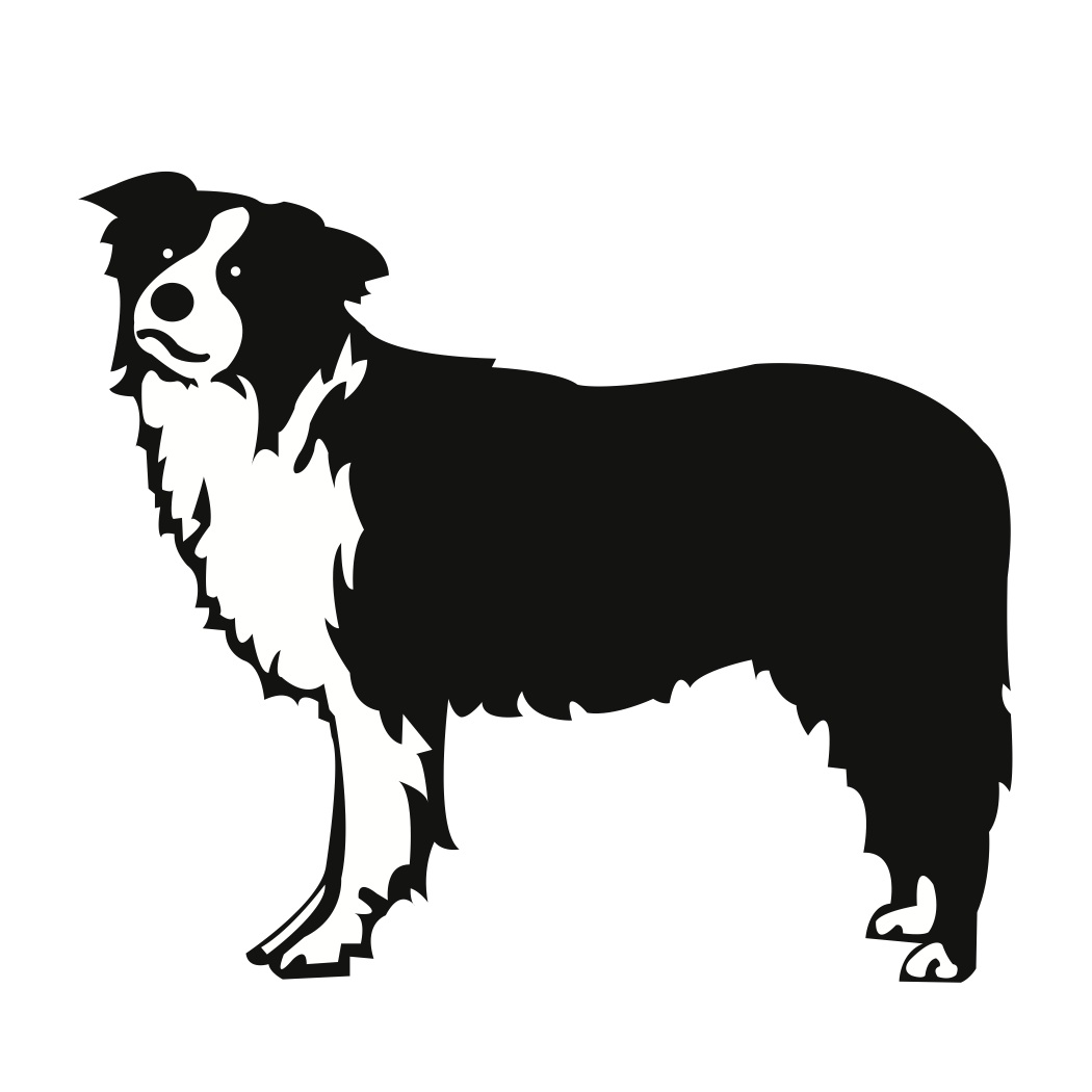 Border Collie svg #19, Download drawings