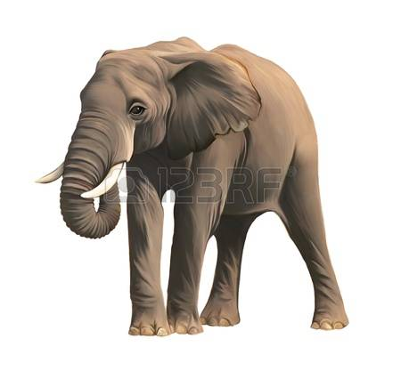 Asian Elephant clipart #7, Download drawings