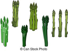 Asparagus clipart #16, Download drawings