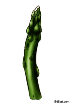 Asparagus clipart #1, Download drawings