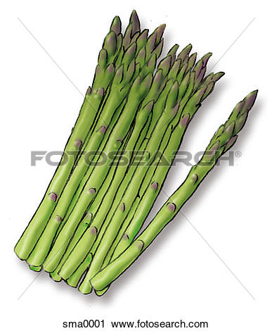 Asparagus clipart #10, Download drawings