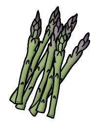 Asparagus clipart #4, Download drawings