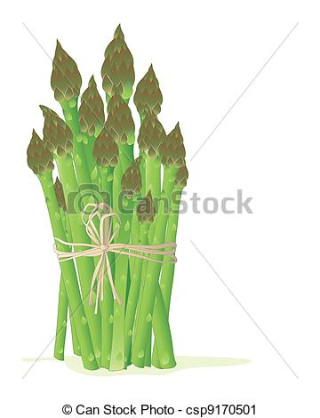Asparagus clipart #6, Download drawings