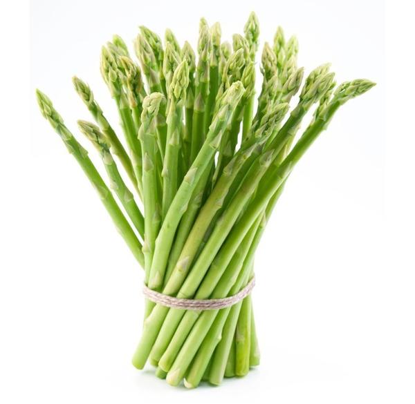 Asparagus svg #16, Download drawings