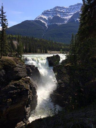 Athabasca Falls svg #13, Download drawings