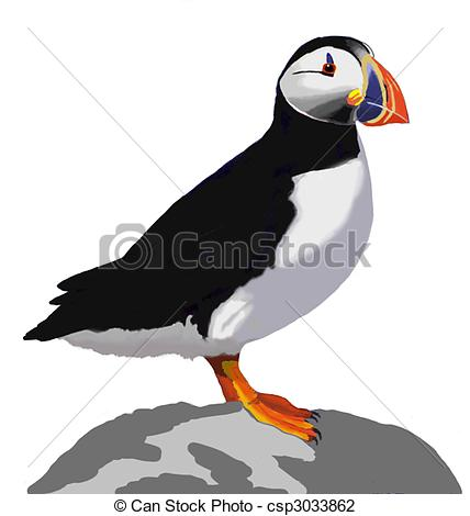Atlantic Puffin clipart #11, Download drawings