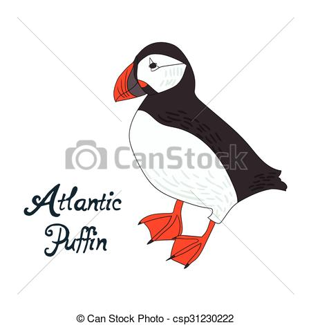 Atlantic Puffin clipart #3, Download drawings