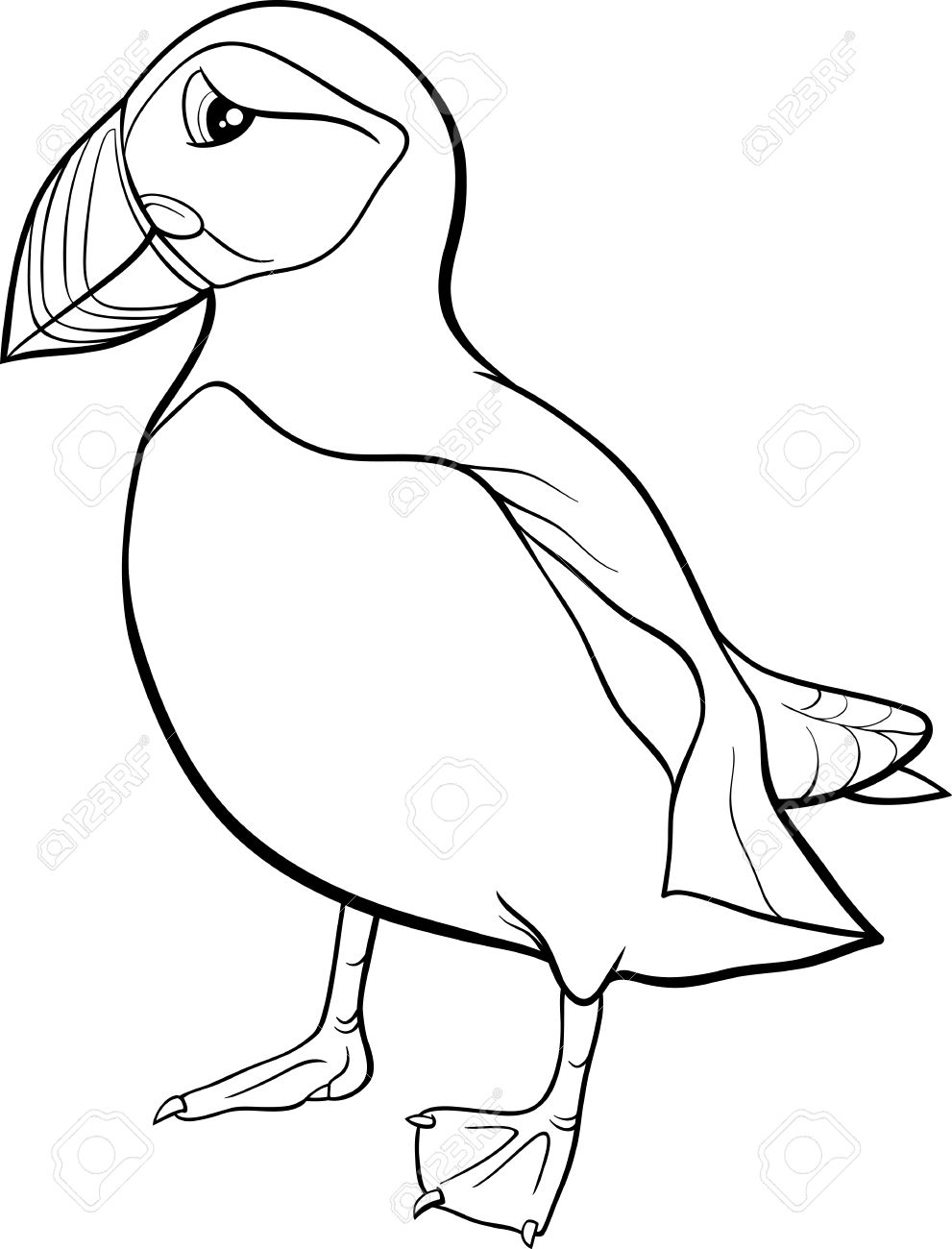 Atlantic Puffin clipart #12, Download drawings