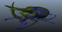 Atlas Beetle svg #8, Download drawings