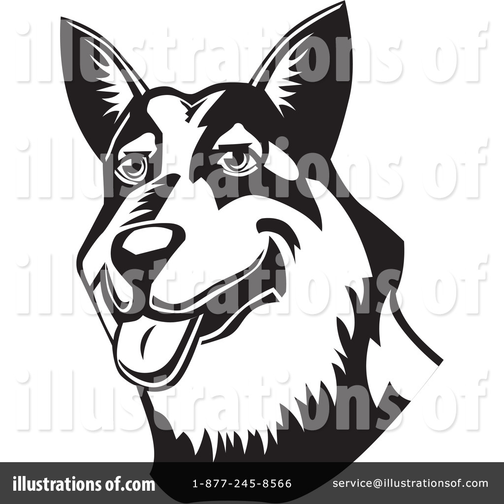 Australian Cattle Dog clipart #8, Download drawings
