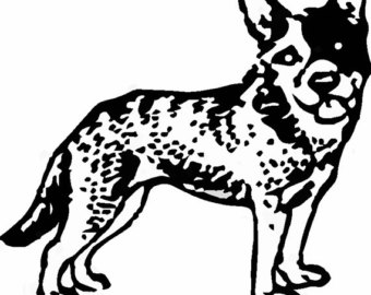 Australian Cattle Dog clipart #1, Download drawings