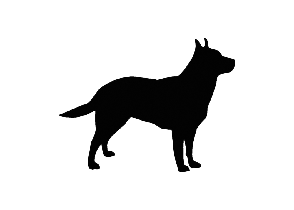 Australian Cattle Dog clipart #18, Download drawings