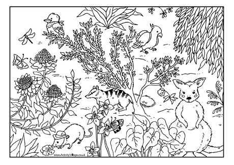 Australian coloring #12, Download drawings