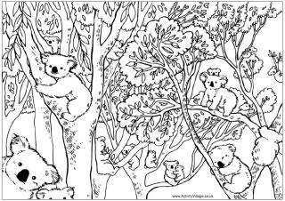 Australian coloring #11, Download drawings