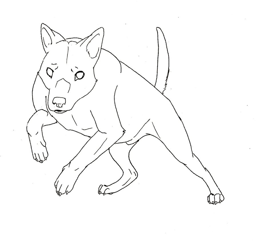 Australian Kelpie coloring #6, Download drawings