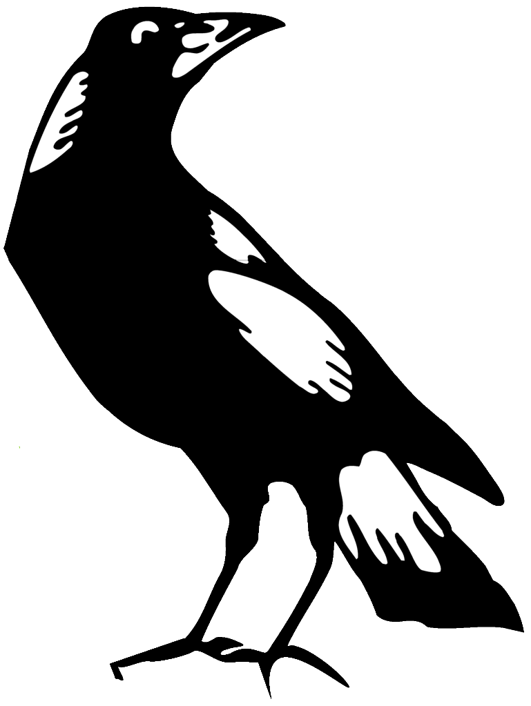 Australian Magpie clipart #18, Download drawings