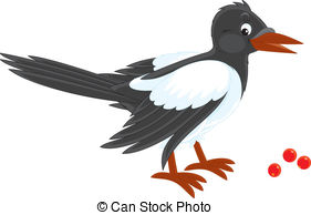 Magpie clipart #14, Download drawings
