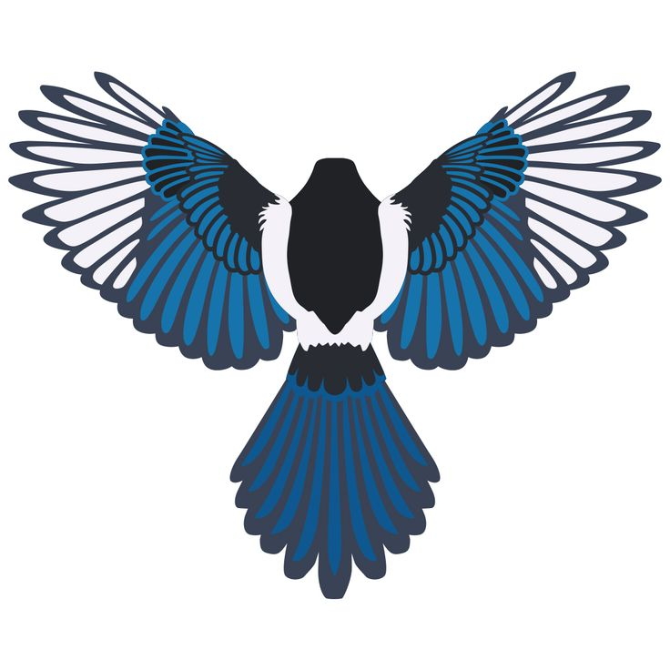 Taiwan Blue Magpie svg #20, Download drawings