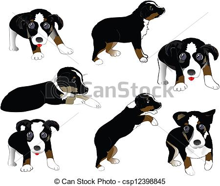 Australian Shepherd clipart #11, Download drawings