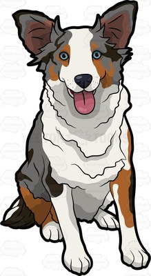 Australian Shepherd clipart #10, Download drawings