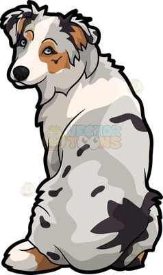 Australian Shepherd clipart #17, Download drawings