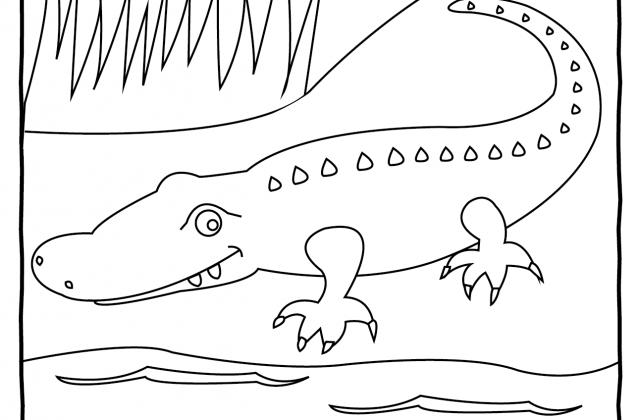 Australian Shepherd coloring #2, Download drawings