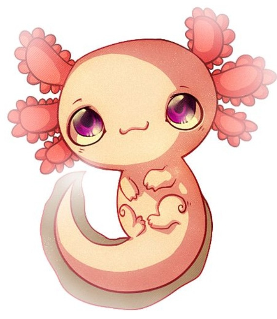 Axolotl clipart #4, Download drawings