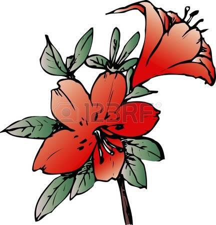 Azalea clipart #8, Download drawings