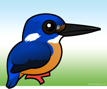 Azure Kingfisher clipart #20, Download drawings
