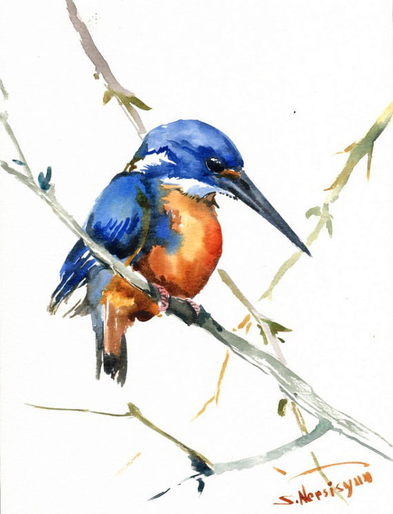 Azure Kingfisher clipart #4, Download drawings