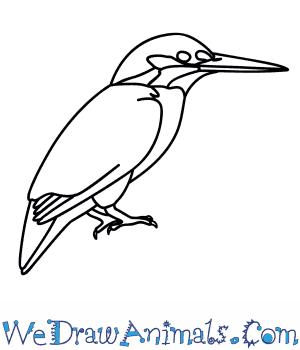 Azure Kingfisher coloring #3, Download drawings