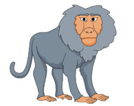 Baboon clipart #19, Download drawings