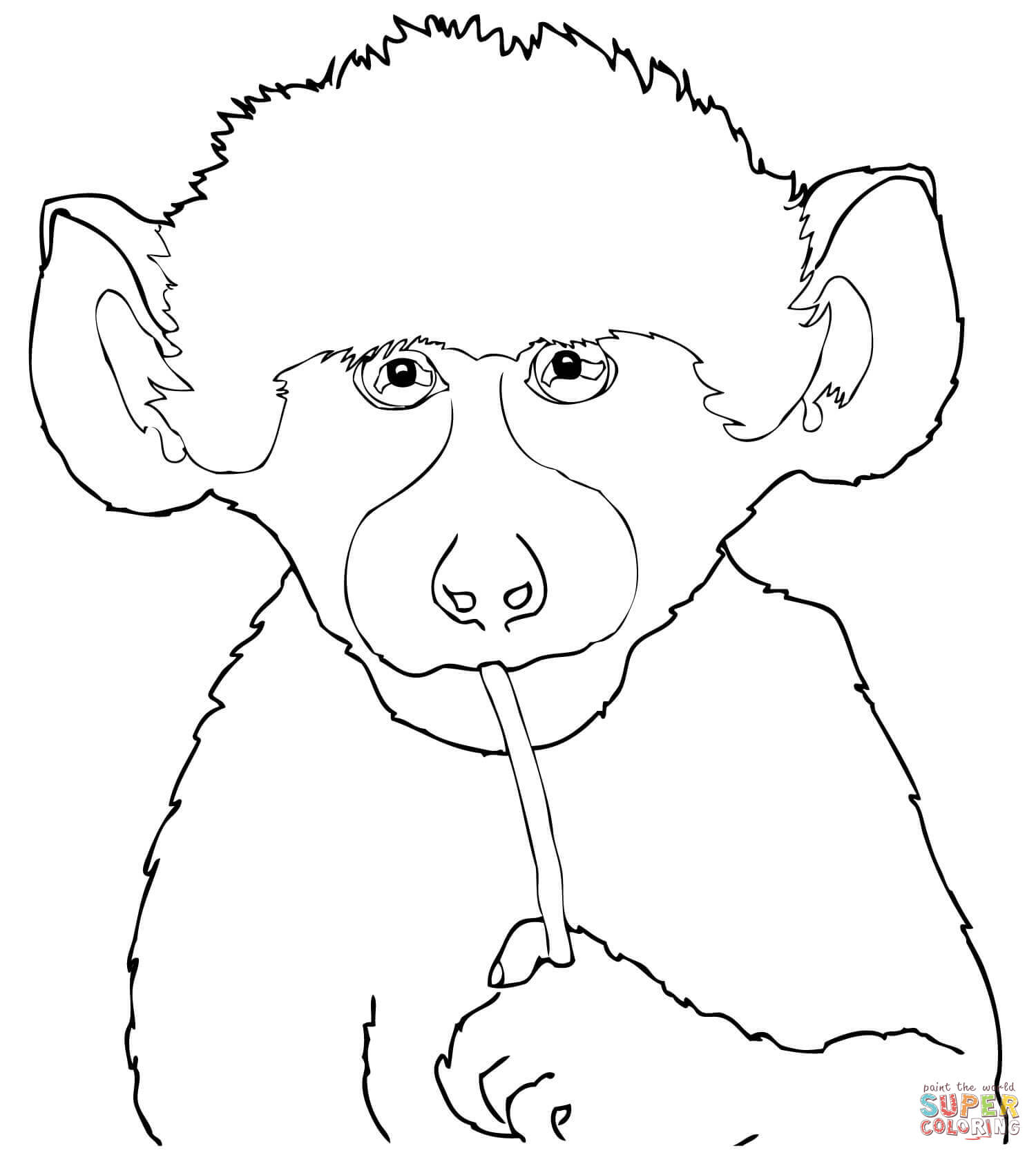 Baboon coloring #12, Download drawings