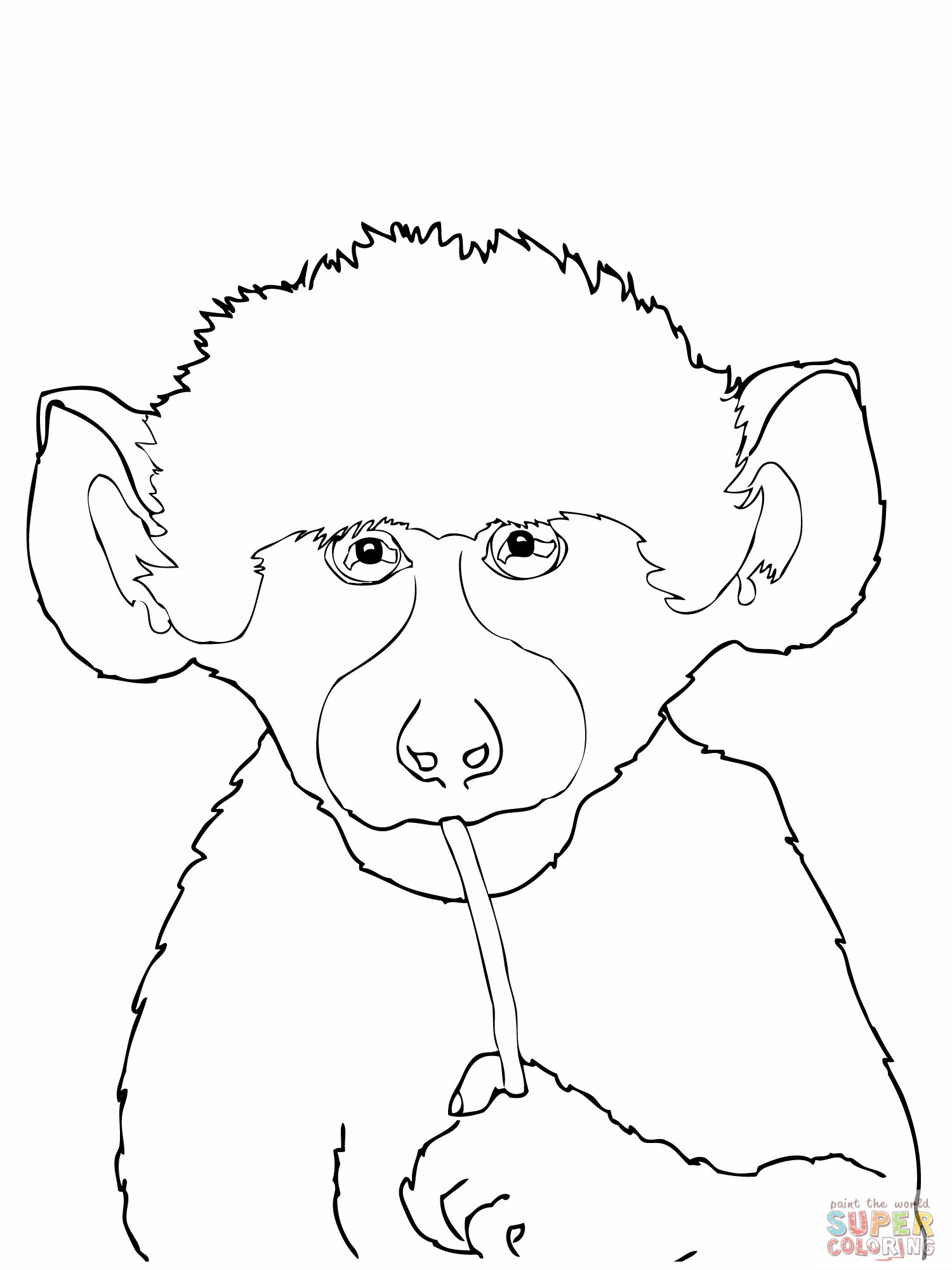Baboon coloring #16, Download drawings