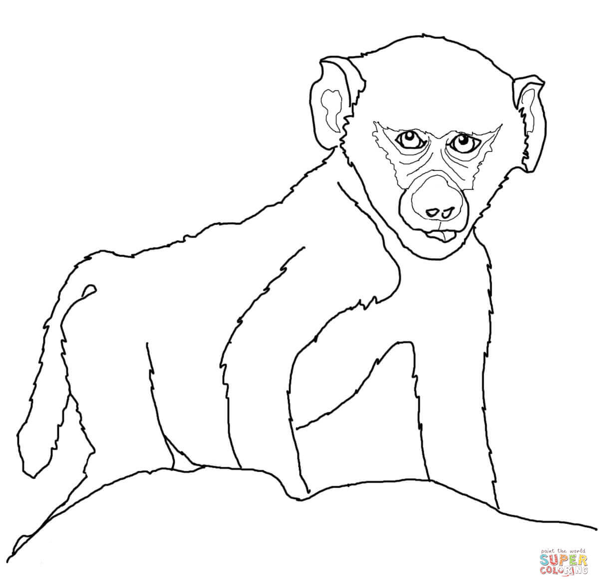 Baboon coloring #14, Download drawings