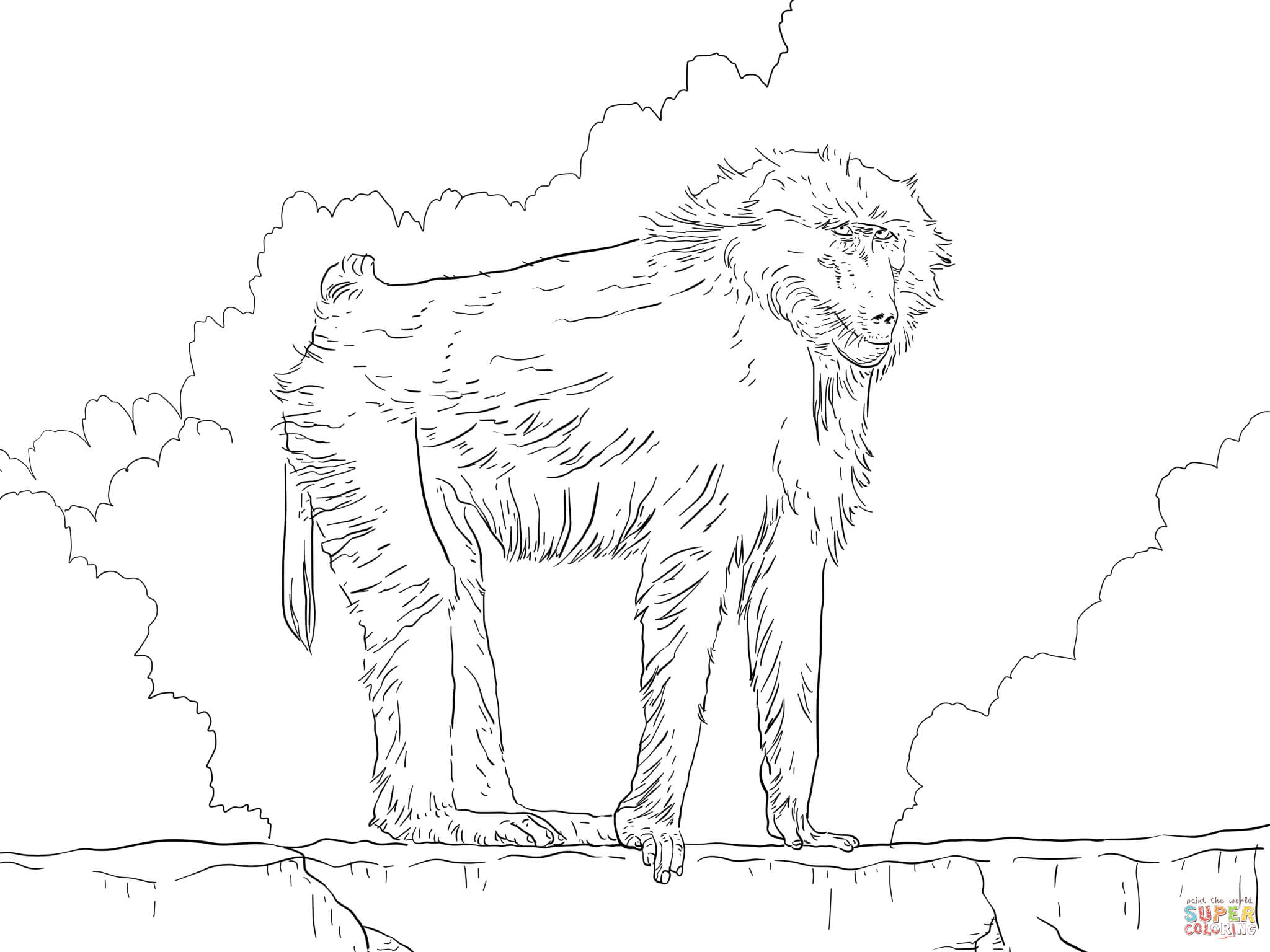Baboon coloring #20, Download drawings