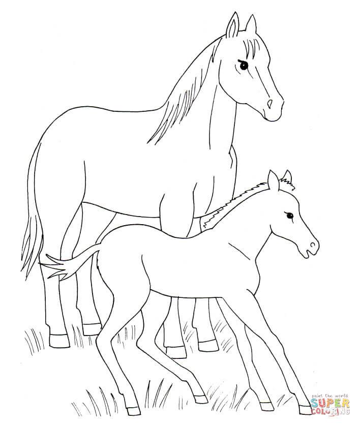 Baby Animal coloring #1, Download drawings