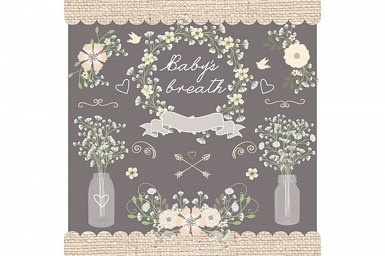 Baby's Breath clipart #9, Download drawings