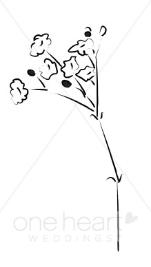 Baby's Breath clipart #17, Download drawings