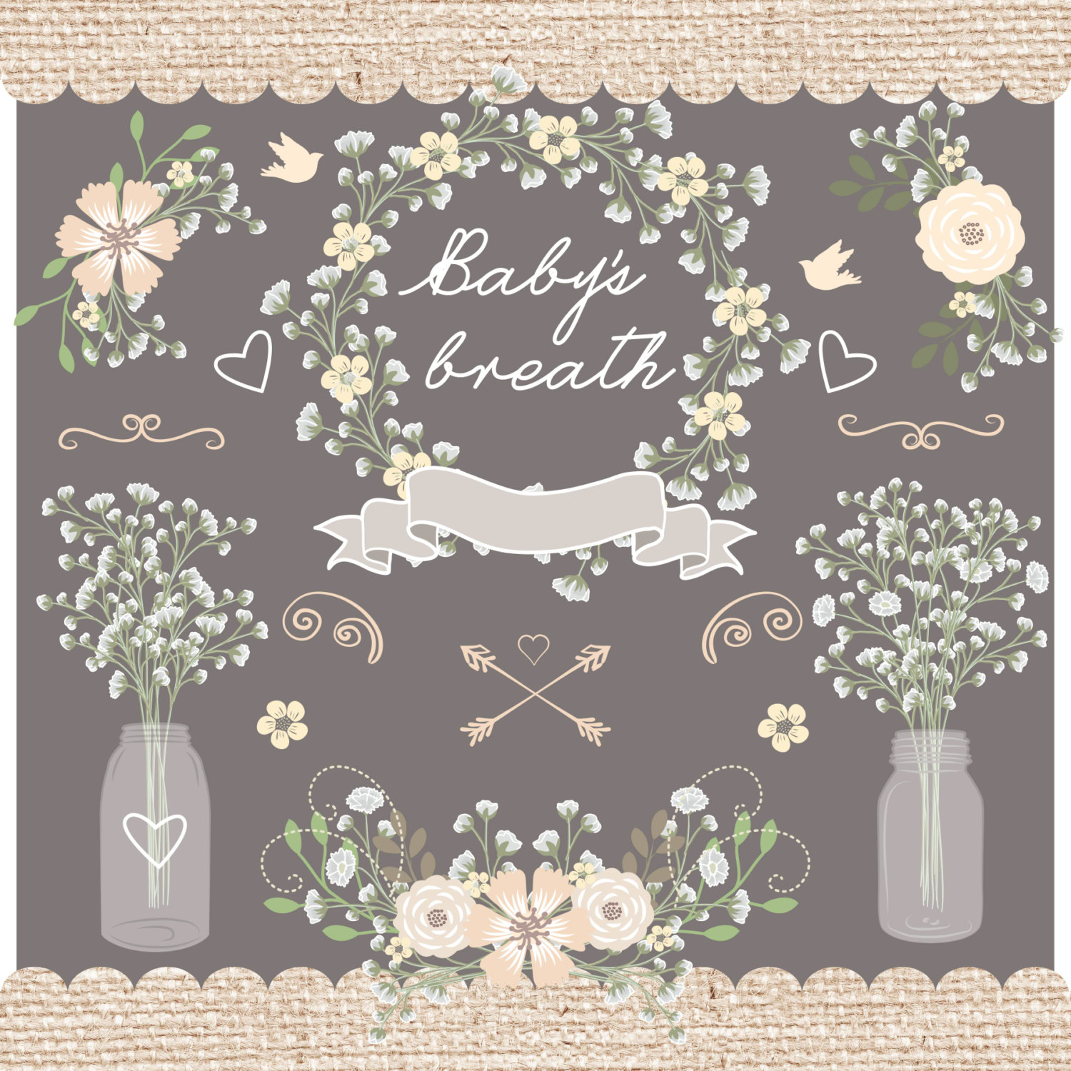 Baby's Breath clipart #18, Download drawings