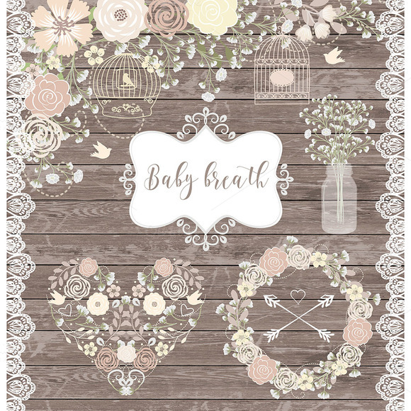 Baby's Breath clipart #4, Download drawings