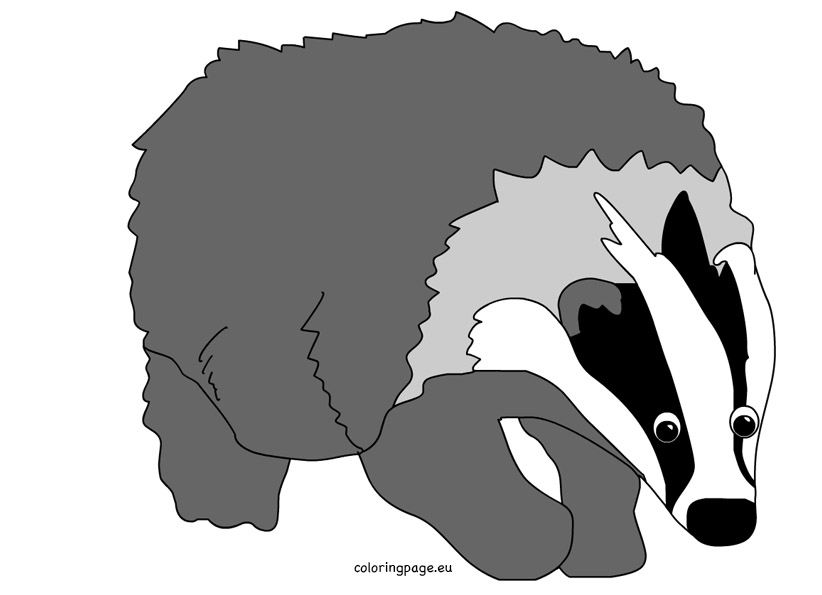 Badger clipart #2, Download drawings